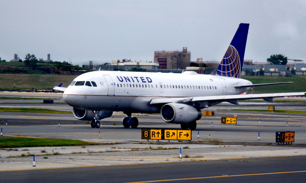Picture of United Airlines Dog Died