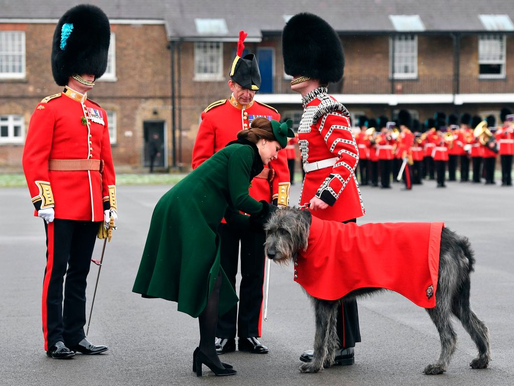 picture-of-kate-middleton-dog-photo.jpg