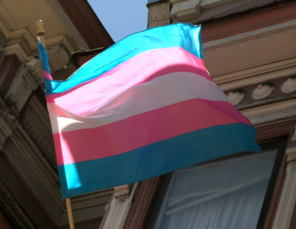 Picture of Trans Day of Visibility
