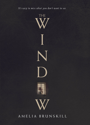 picture-of-the-window-book-photo.jpg