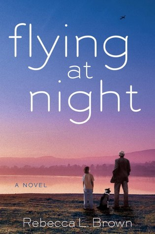 picture-of-flying-at-night-book-photo.jpg