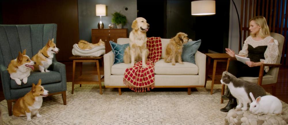Kristen Bell Netflix Pets