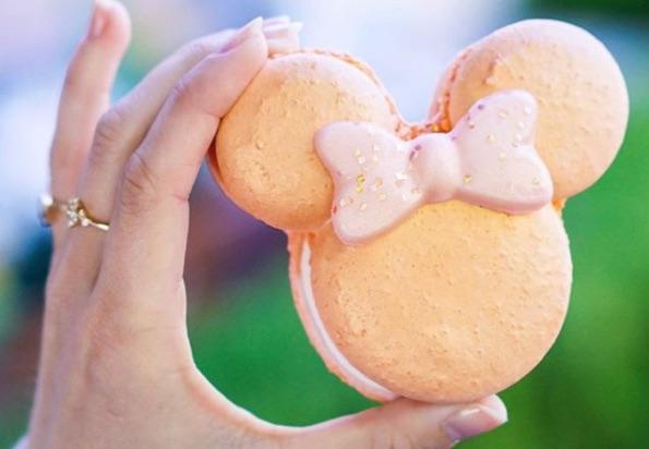 Picture of Disney Rose Gold Macaron