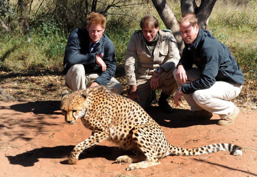 royal-fam-botswana-e1525457529702.jpg