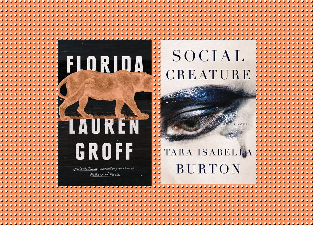 Picture of Books Coming Out This Week Florida Social Creature Books