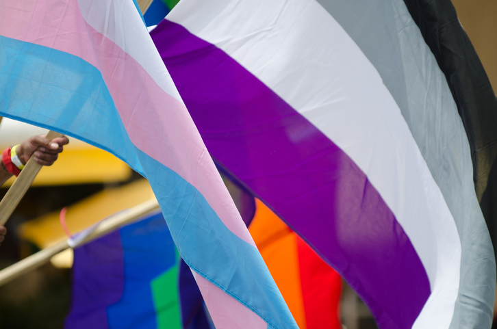 Asexual flag waving at a Pride celebration