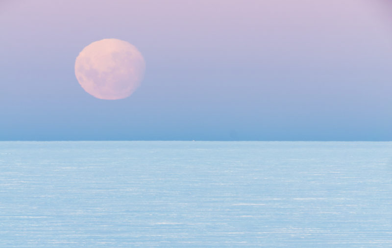 Image of a pink full moon