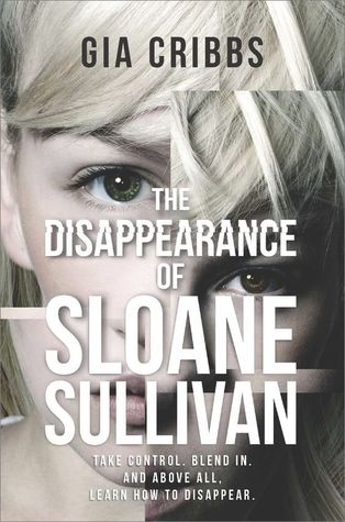 picture-of-the-disappearance-of-sloane-sullivan-book-photo.jpg