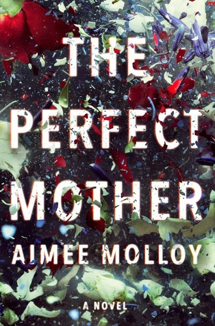 picture-of-the-perfect-mother-book-photo.jpg