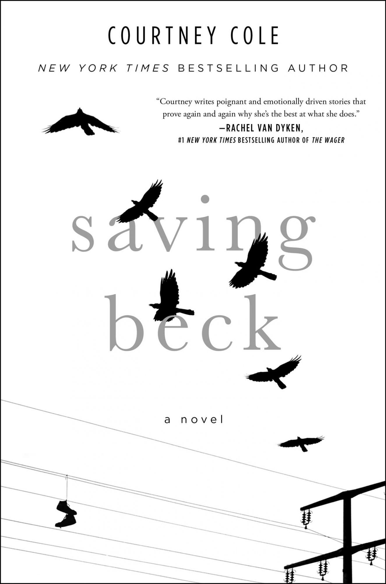 picture-of-saving-beck-book-photo.jpg