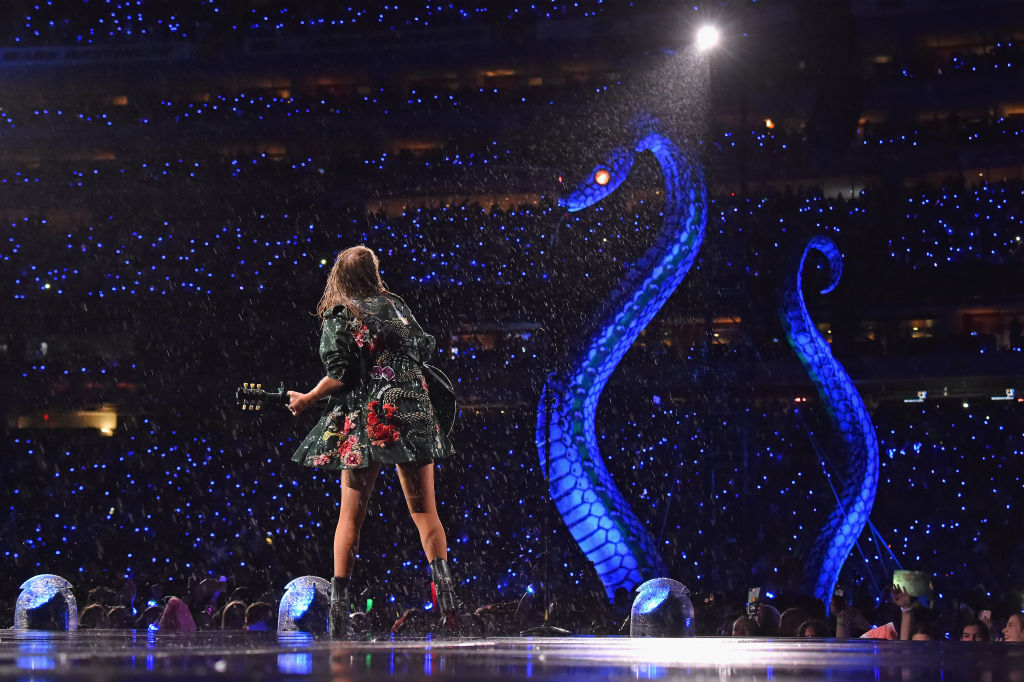 picture-of-reputation-tour-review-photo.jpg