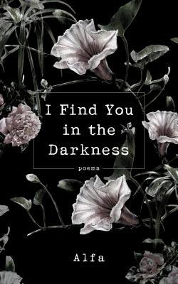 picture-of-I-find-you-in-the-darkness-book-photo