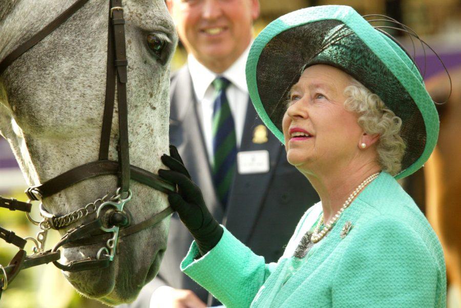 queen-e1535398109876.jpg