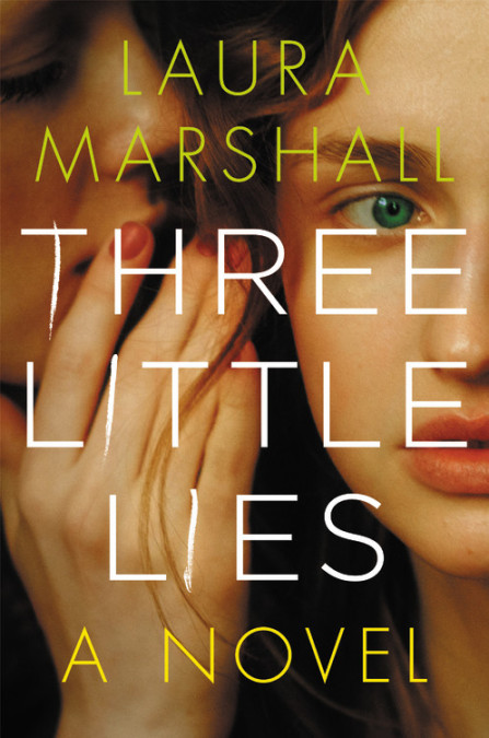 picture-of-three-little-lies-book-photo