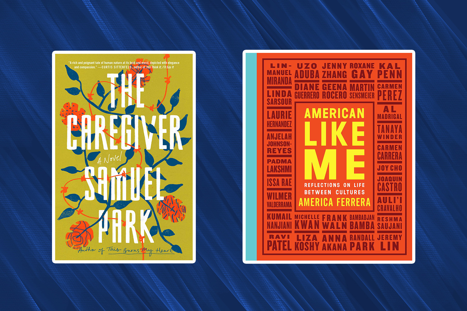 Picture of Books Coming Out This Week The Caregiver American Like Me Books