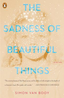 picture-of-the-sadness-of-beautiful-things-book-photo