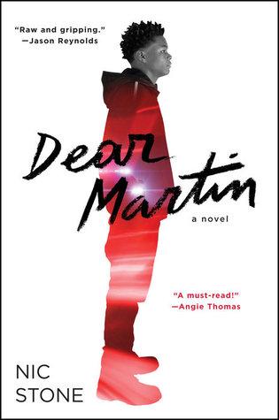 picture-of-dear-martin-book-photo
