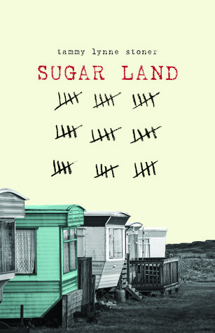 picture-of-sugar-land-book-photo