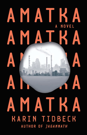 picture-of-amatka-book-photo