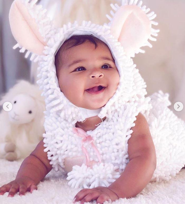 baby-true-sheep.jpg