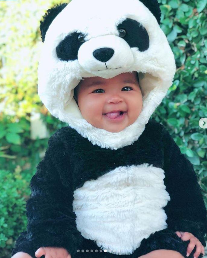 true-panda-bear.jpg