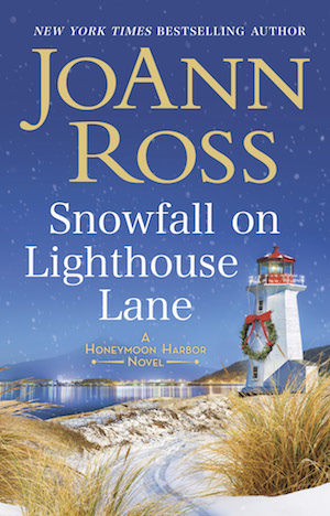 picture-of-snowfall-on-lightouse-lane-book-photo