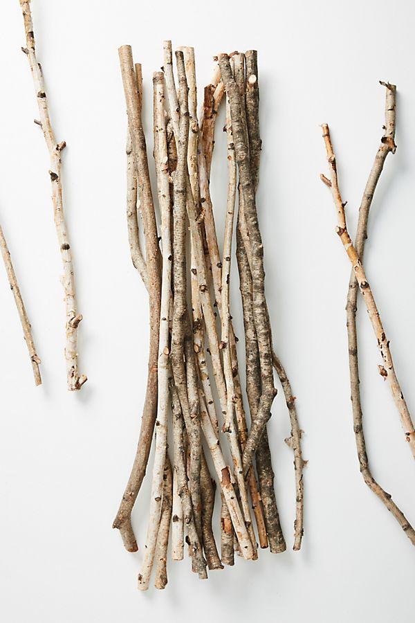 twigs.jpeg