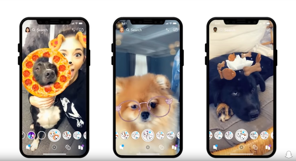 Picture of Snapchat Dog Filters