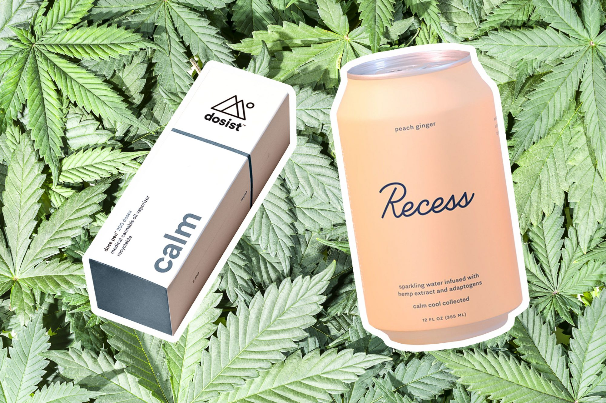cbd products that are hellogiggles approved