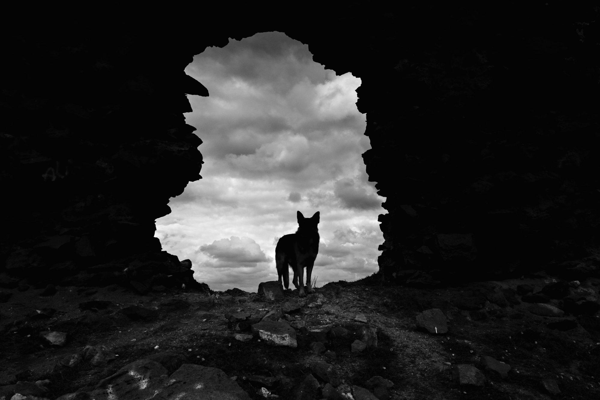 super blood wolf moon rituals