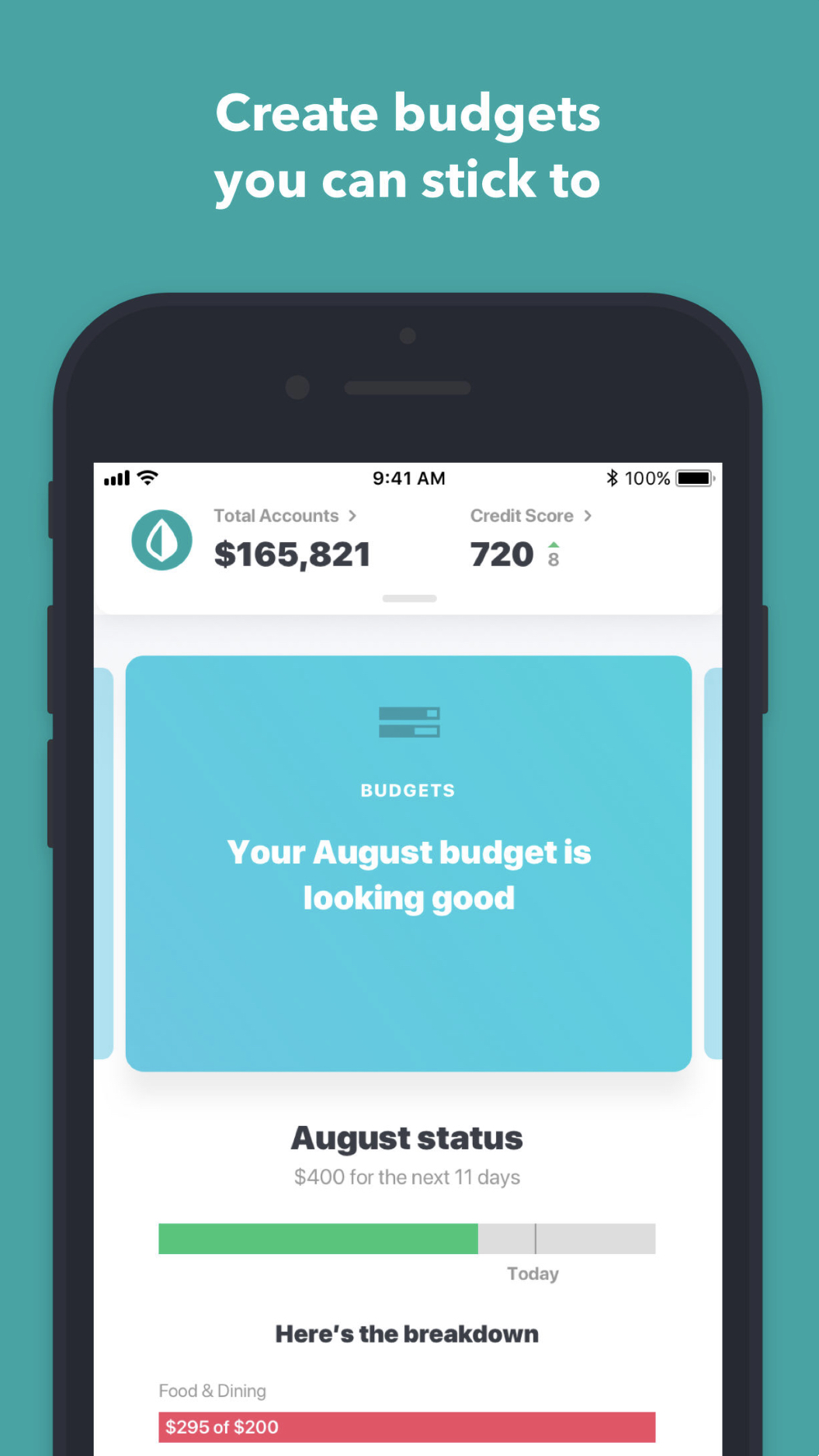 picture-of-mint-budget-app-photo.jpg1_.jpeg