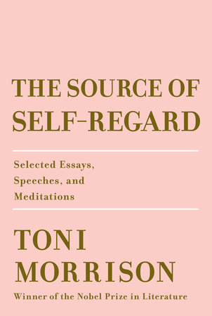 picture-of-the-source-of-self-regard-book-photo
