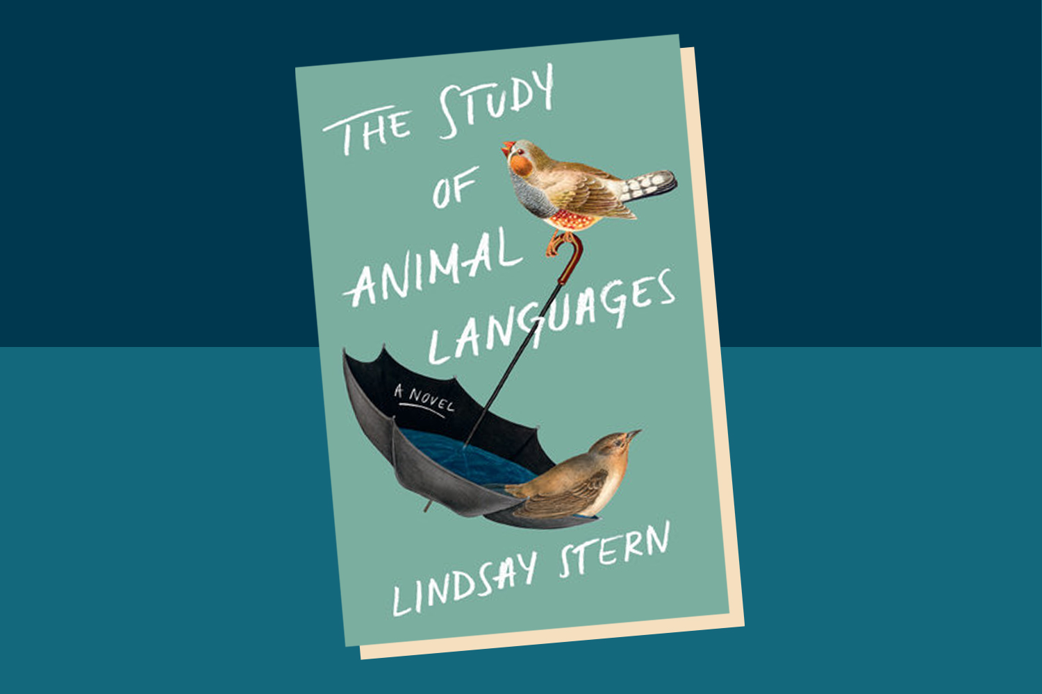 Picture of The Study of Animal Languages Lindsay Stern Interview