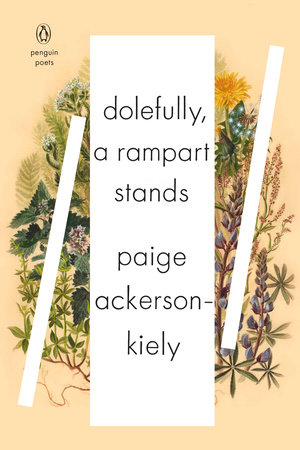 picture-of-dolefully-a-rampart-stands-book-photo