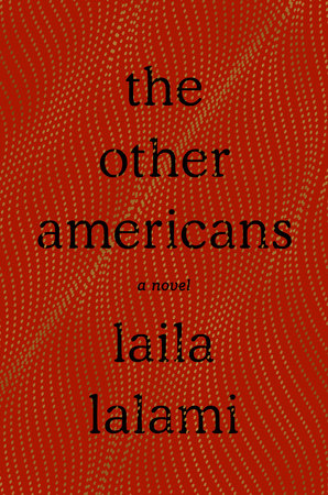 picture-of-the-other-americans-book-photo