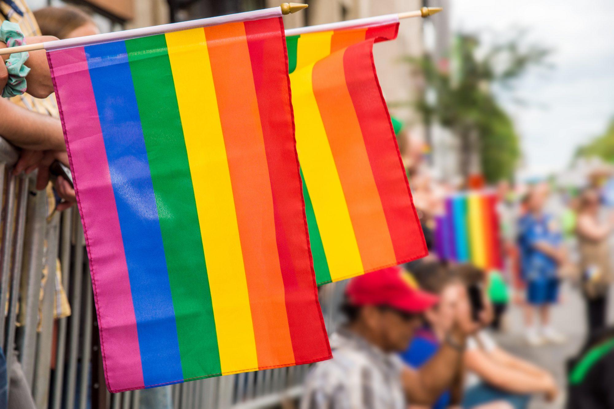 queer-flags.jpg