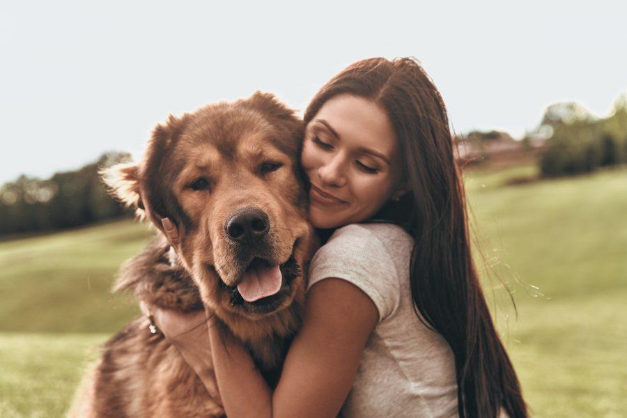 dog breed zodiac sign