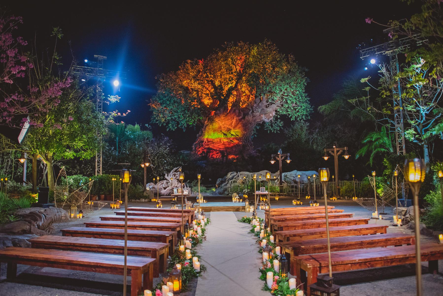 wedding-disney.jpg