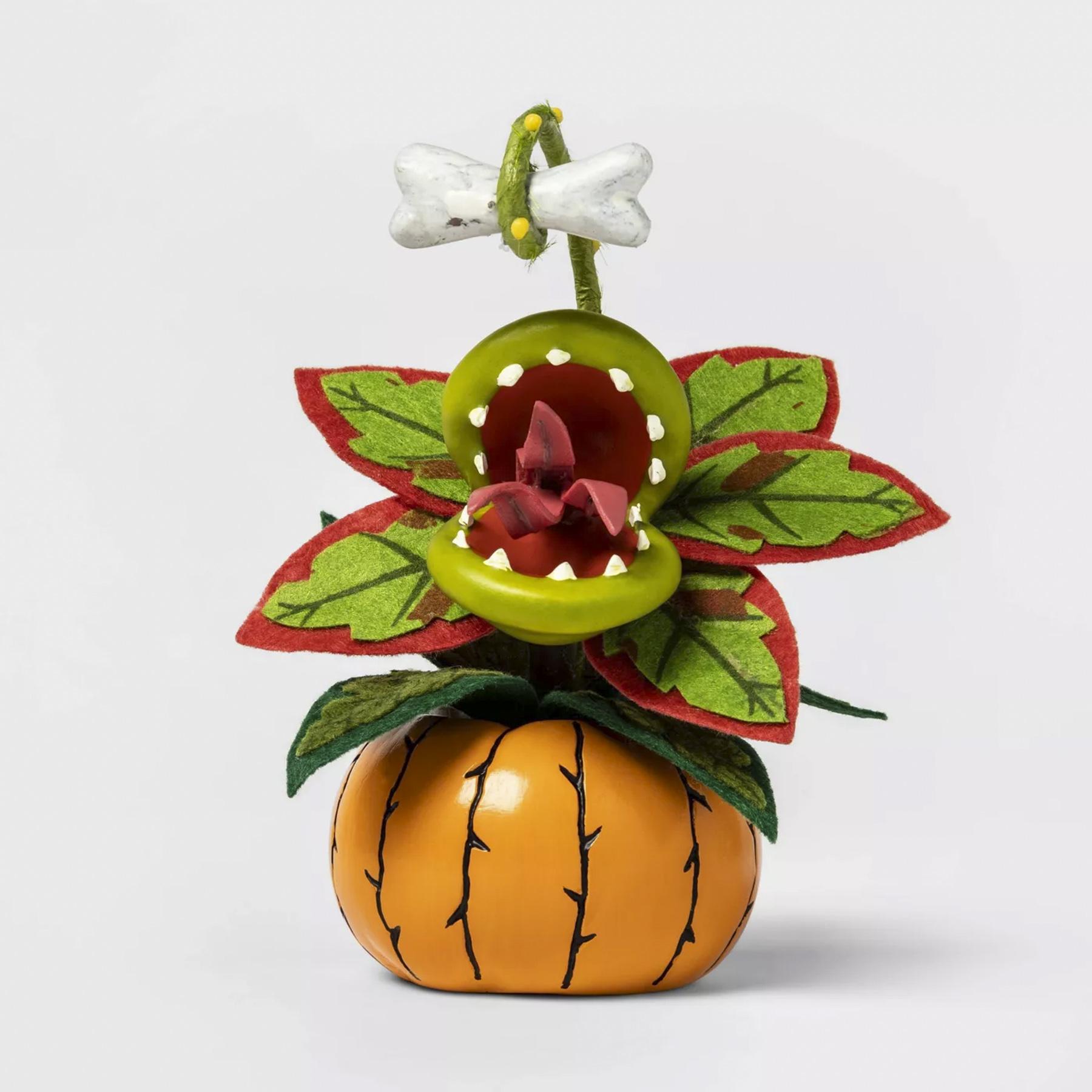 target halloween succulent