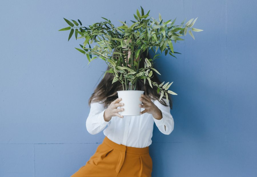 Woman holding a houseplant in front of her face