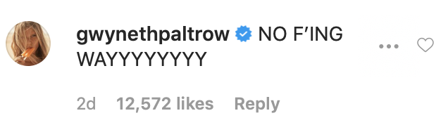 gwenyth-paltrow-friends-reunion.png
