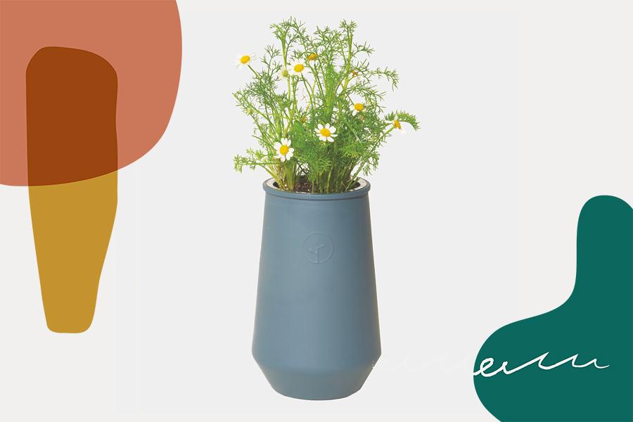 indoor garden grow kit