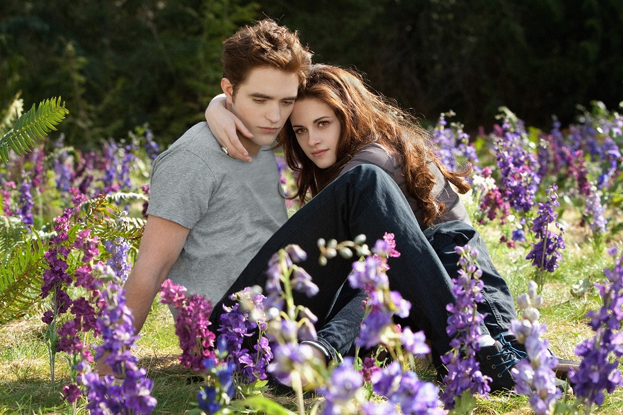 twilight bella and edward, midnight sun