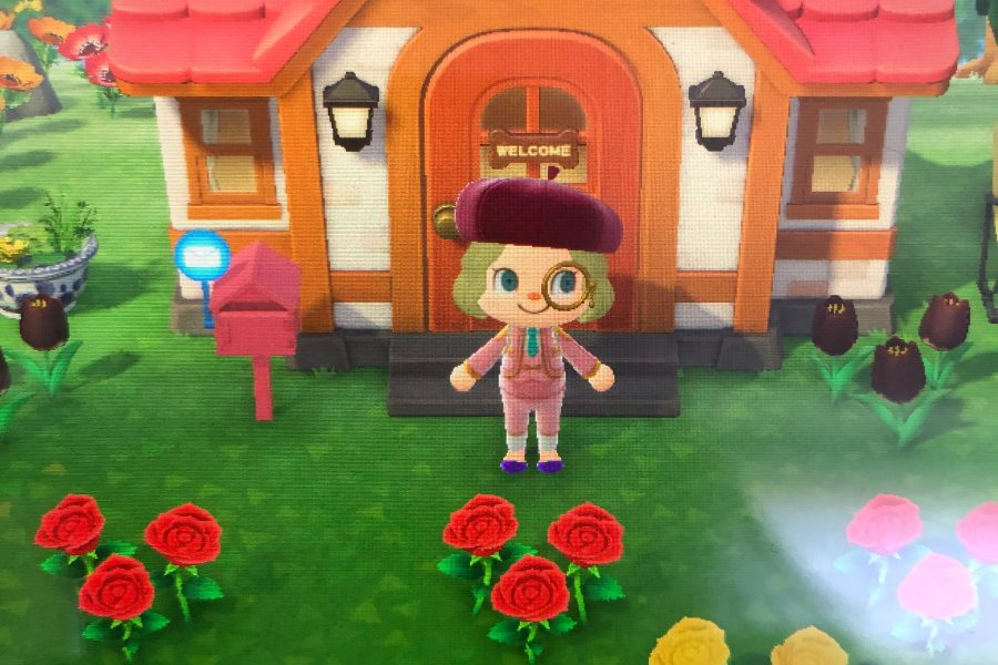 me-animal-crossing-e1588877108580.jpg
