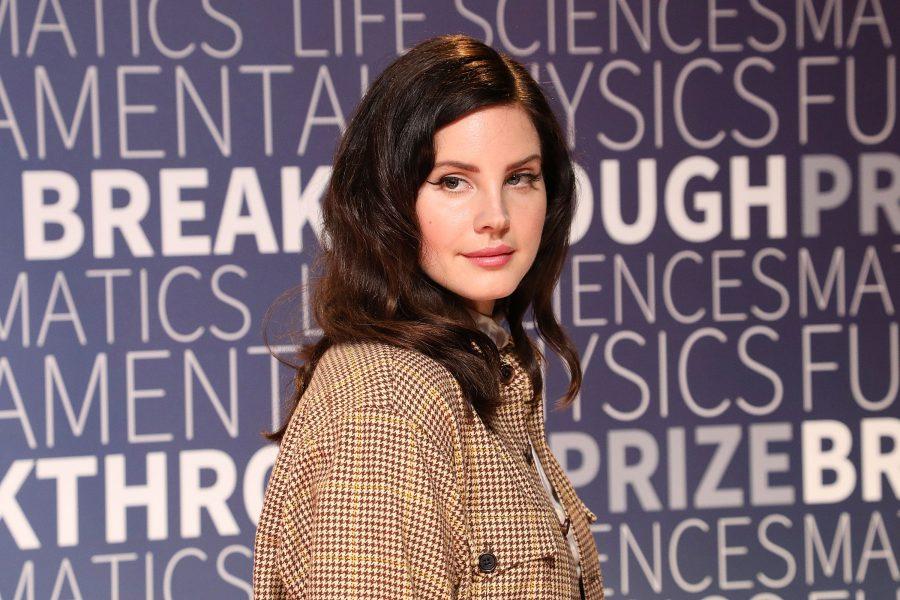 Lana Del Rey hair