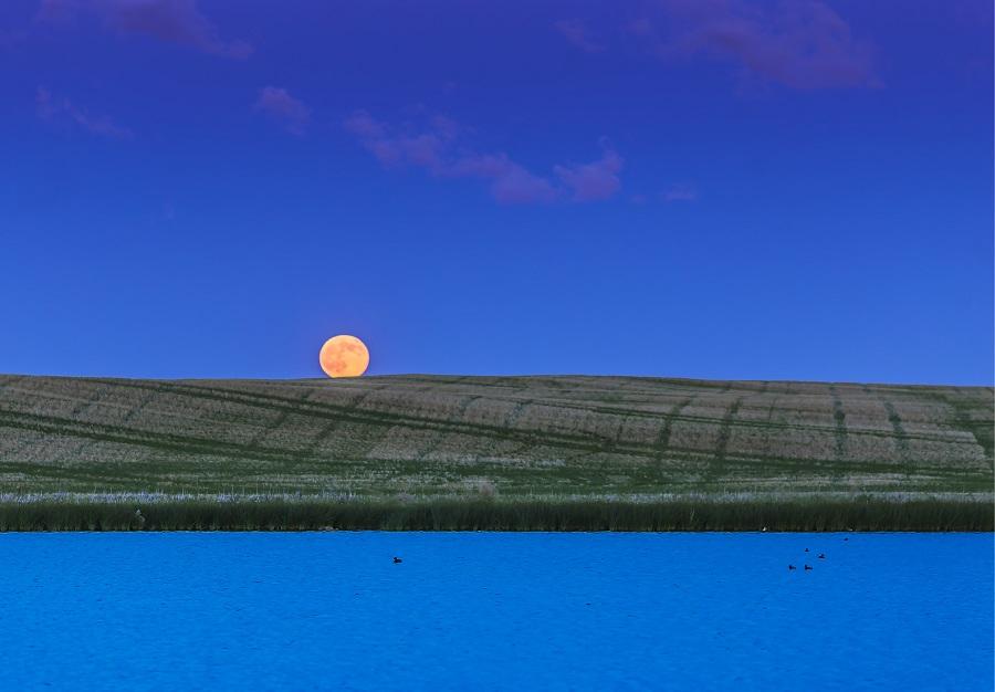 strawberry-full-moon-rituals.jpg
