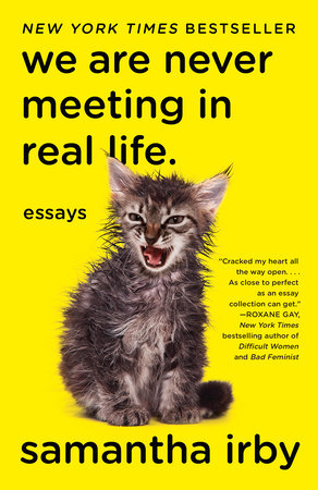 picture-of-we-are-never-meeting-in-real-life-book-photo
