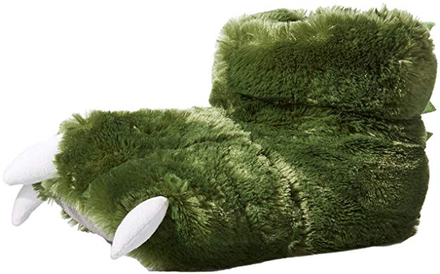 picture-of-dinosaur-slippers-photo