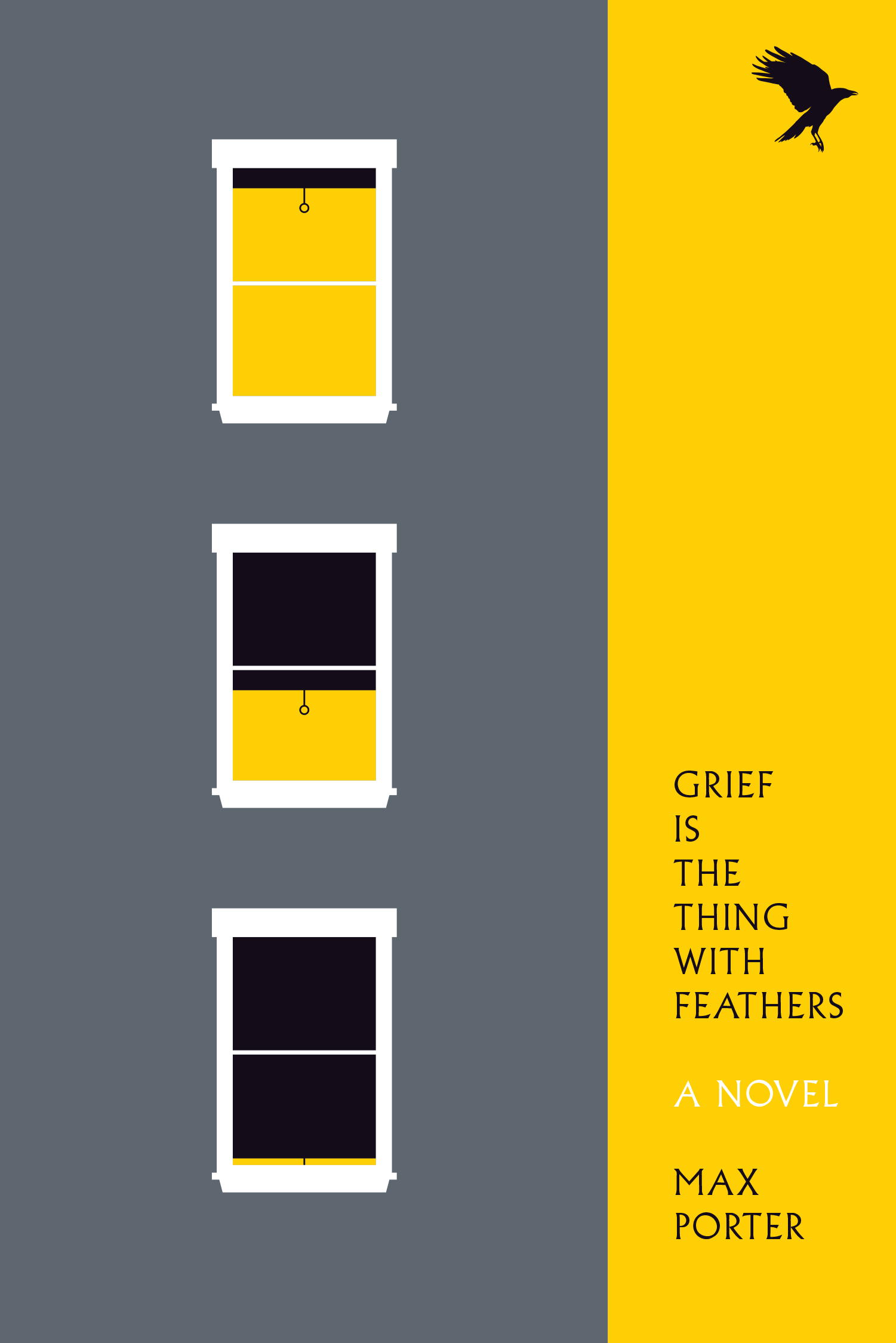 picture-of-grief-is-the-thing-with-feathers-book-photo
