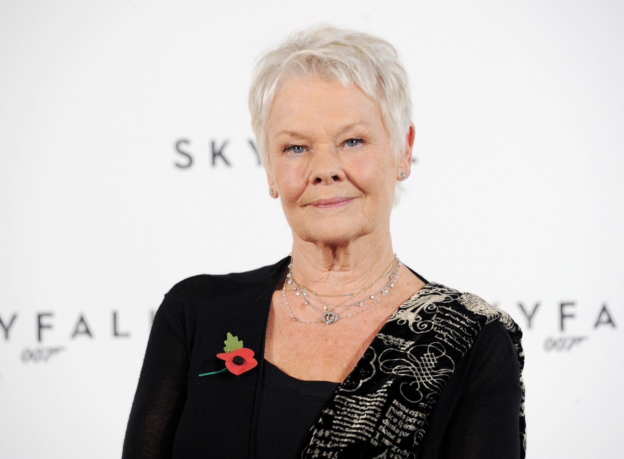 dame judy dench, tiktok videos